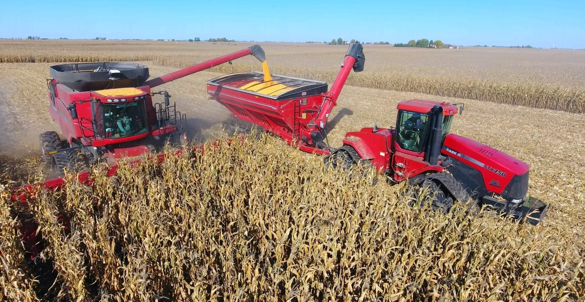 Red Combine graincarts in a corn field